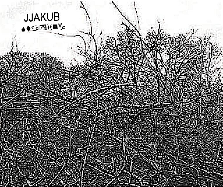 Jjakub_Promo